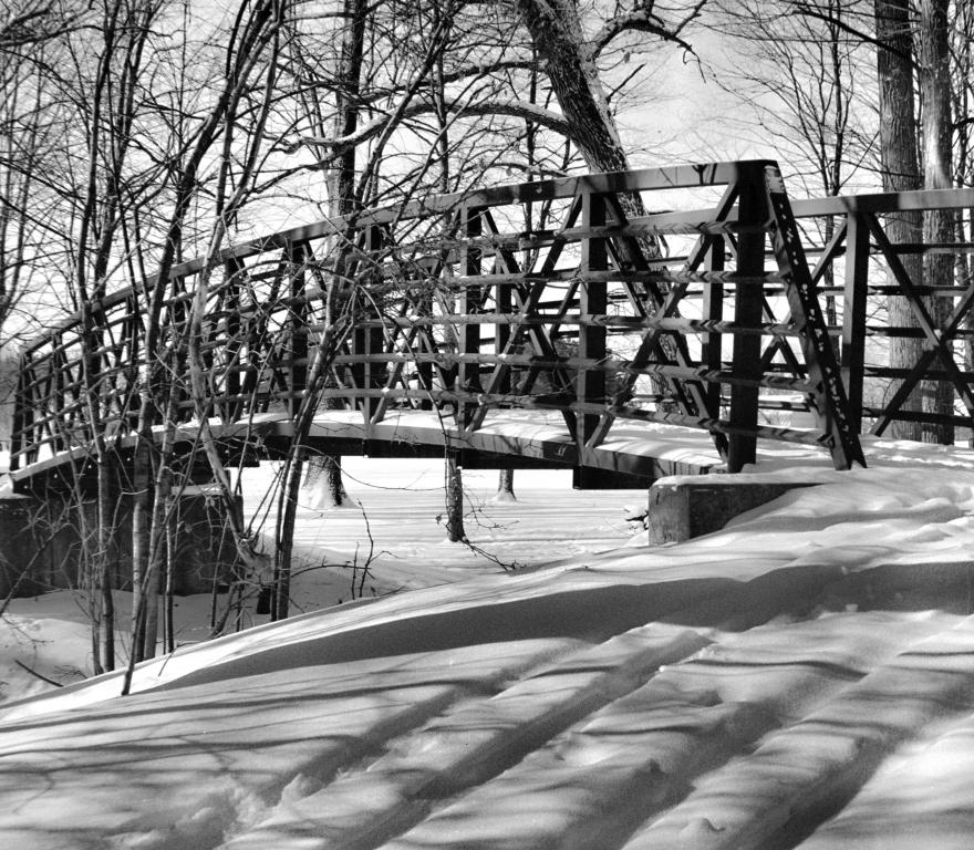 Bridge209Filter (1 of 1)